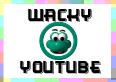 Wacky YouTube Videos